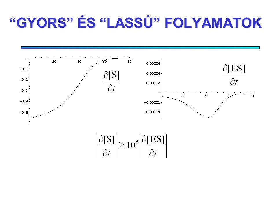 AZ ÁTMENETI KOMPLEX KONCENTRÁCIÓVÁLTOZÁSA Ha a kinetikai egyenleteket elhanyagolások nélkül oldjuk meg, kiderül, hogy a reakció során rendkívül gyors és lassú folyamatok zajlanak egyidejüleg.