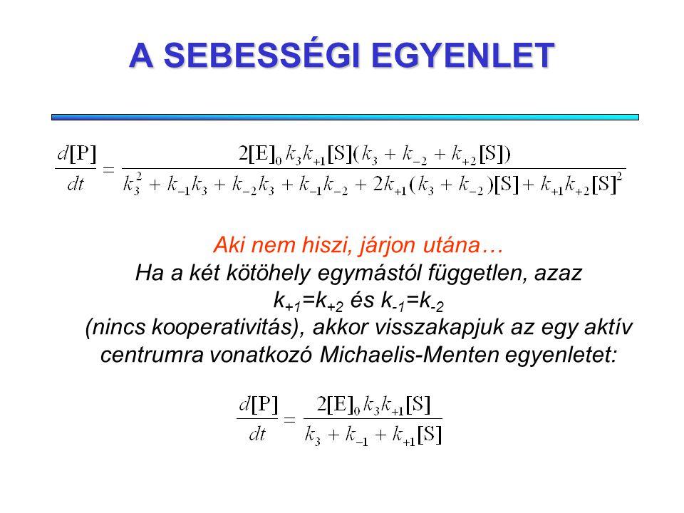 KVÁZISTACIONÁRIUS KÖZELÍTÉS Az átmeneti komplexek, ES és ES 2 koncentrációit kifejezzük a kvázistacionárius feltételekböl, és behelyettesítjük a termék képzödési sebességét leíró egyenletbe: