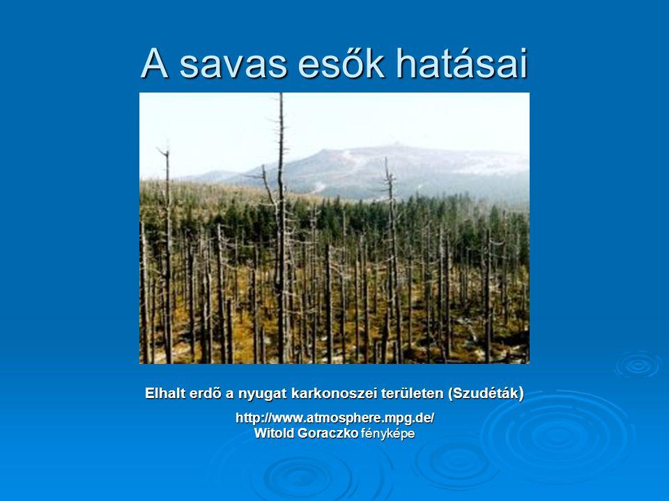 A savas esők hatásai Elhalt erdõ a nyugat karkonoszei területen (Szudéták ) http://www.atmosphere.mpg.de/ Witold Goraczko fényképe