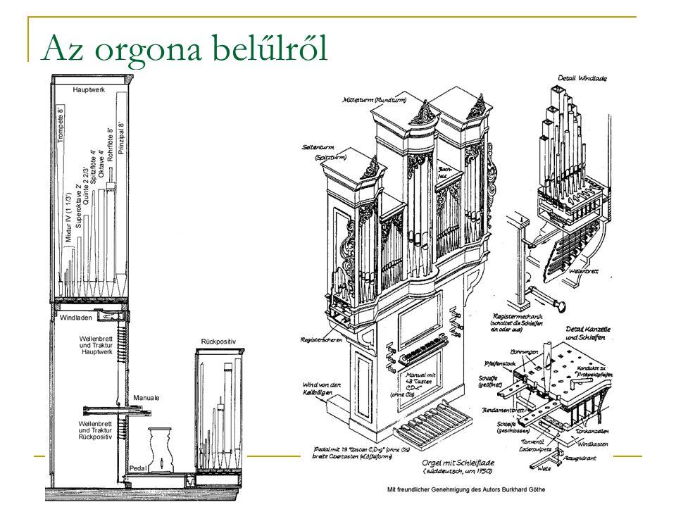 Az orgona belűlről
