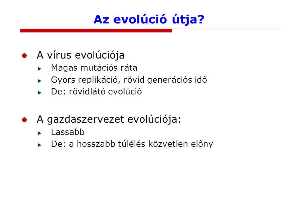 Az evolúció útja.