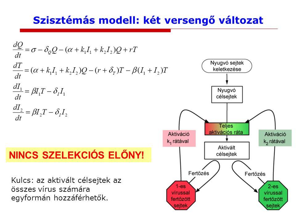 Szisztémás modell: két versengő változat NINCS SZELEKCIÓS ELŐNY.