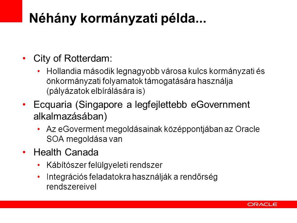 Néhány kormányzati példa... City of Rotterdam: Hollandia második legnagyobb városa kulcs kormányzati és önkormányzati folyamatok támogatására használj