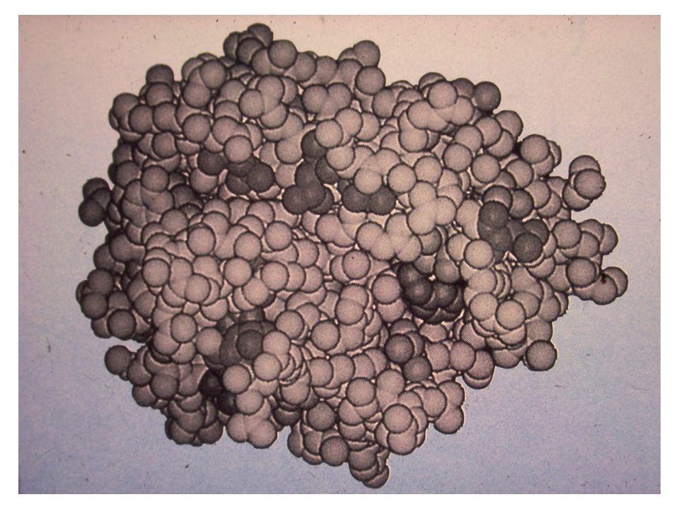 A fehérjék fiziológiás körülmények (pH, ionerősség) között harmadlagos ill.