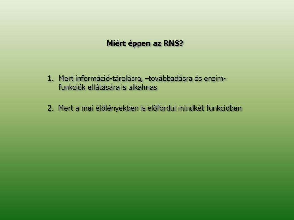 Miért éppen az RNS? 1.Mert információ-tárolásra, –továbbadásra és enzim- funkciók ellátására is alkalmas 2. Mert a mai élőlényekben is előfordul mindk