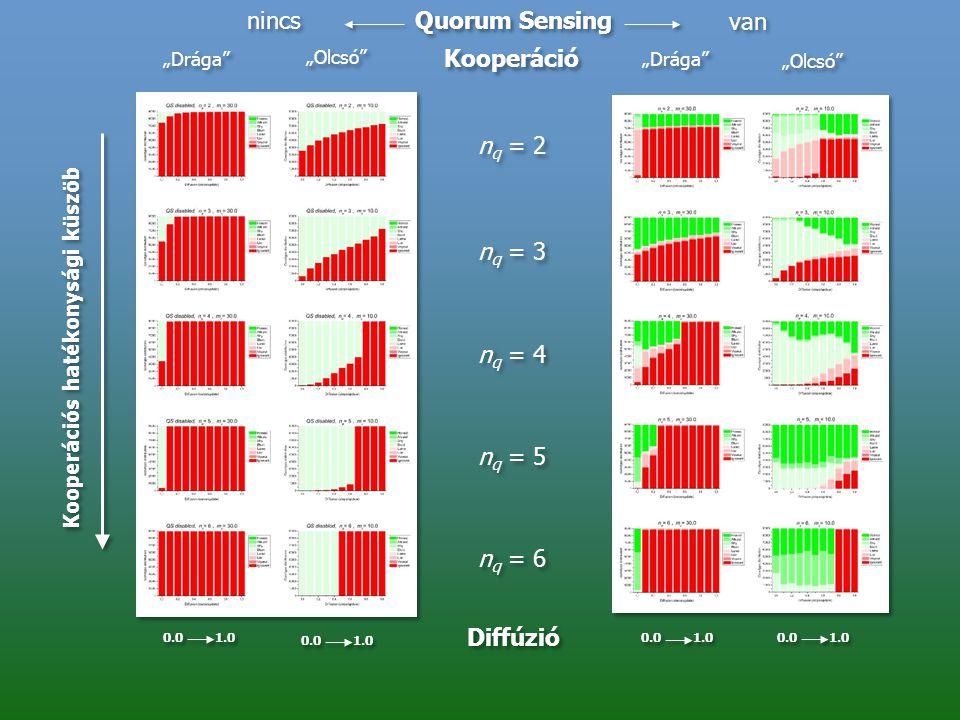 """nincs van n q = 2 n q = 3 n q = 4 n q = 5 n q = 6 """"Drága"""" """"Olcsó"""" Quorum Sensing Kooperáció Diffúzió 0.0 1.0 Kooperációs hatékonysági küszöb"""