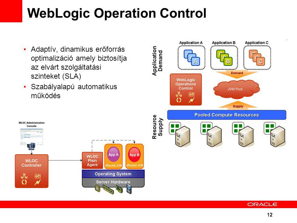 12 WebLogic Operation Control Adaptív, dinamikus erőforrás optimalizáció amely biztosítja az elvárt szolgáltatási szinteket (SLA) Szabályalapú automatikus működés