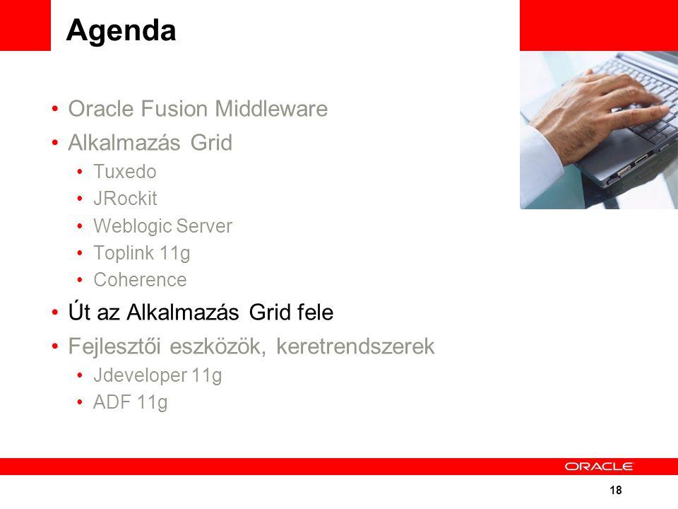 18 Agenda Oracle Fusion Middleware Alkalmazás Grid Tuxedo JRockit Weblogic Server Toplink 11g Coherence Út az Alkalmazás Grid fele Fejlesztői eszközök, keretrendszerek Jdeveloper 11g ADF 11g
