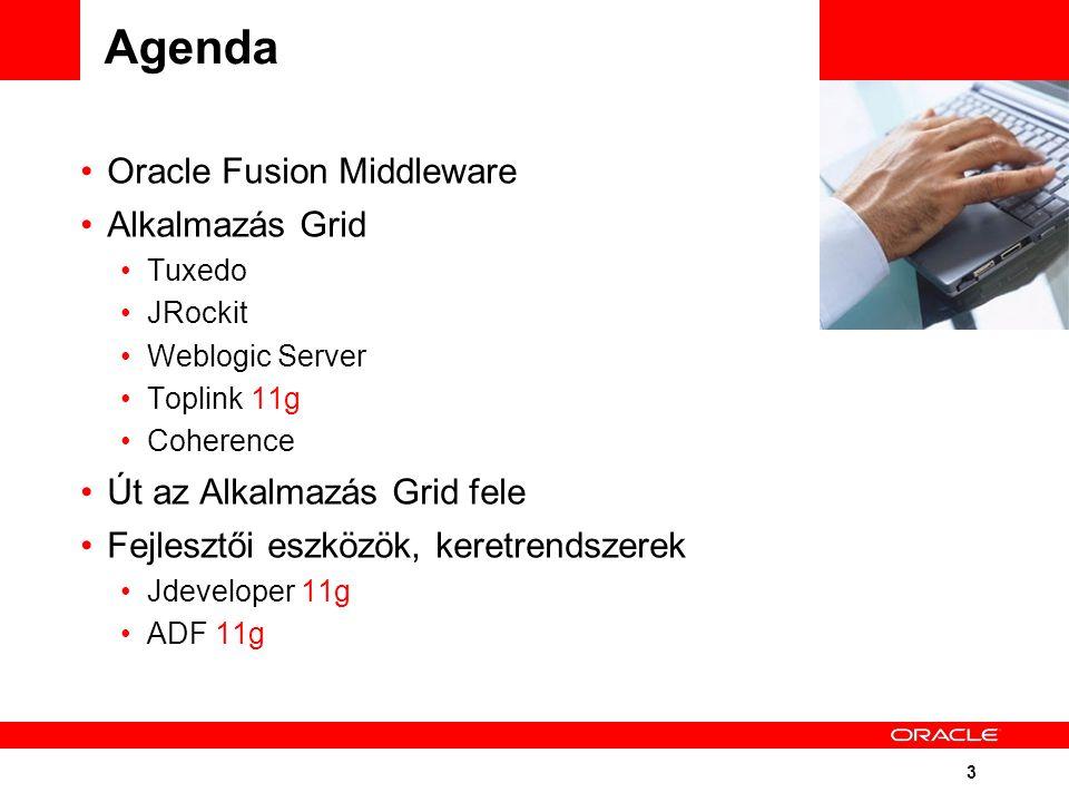 3 Agenda Oracle Fusion Middleware Alkalmazás Grid Tuxedo JRockit Weblogic Server Toplink 11g Coherence Út az Alkalmazás Grid fele Fejlesztői eszközök, keretrendszerek Jdeveloper 11g ADF 11g