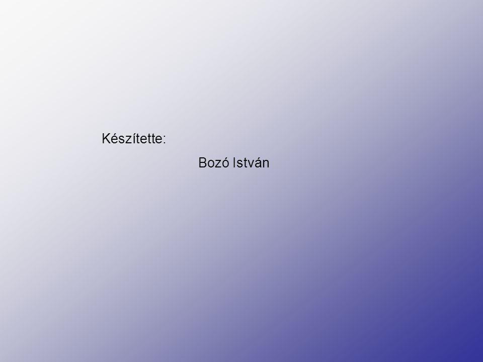 Készítette: Bozó István