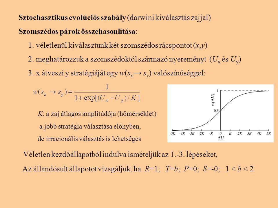 Sztochasztikus evolúciós szabály (darwini kiválasztás zajjal) Szomszédos párok összehasonlítása: 1. véletlenül kiválasztunk két szomszédos rácspontot