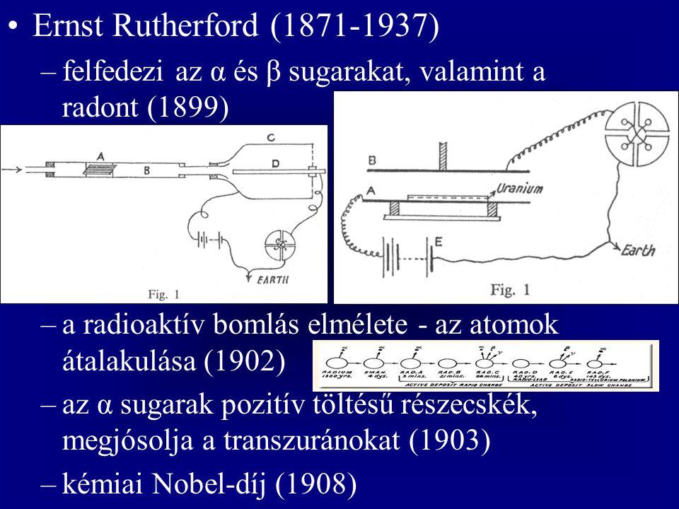 Ernst Rutherford (1871-1937) –felfedezi az α és β sugarakat, valamint a radont (1899) –a radioaktív bomlás elmélete - az atomok átalakulása (1902) –az