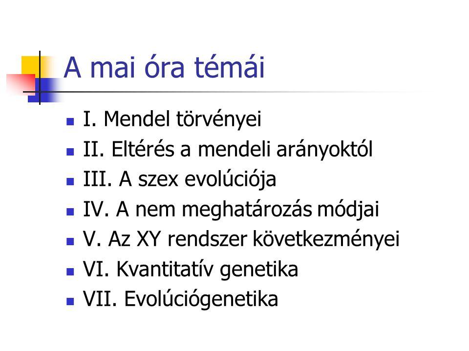 A mai óra témái I. Mendel törvényei II. Eltérés a mendeli arányoktól III. A szex evolúciója IV. A nem meghatározás módjai V. Az XY rendszer következmé