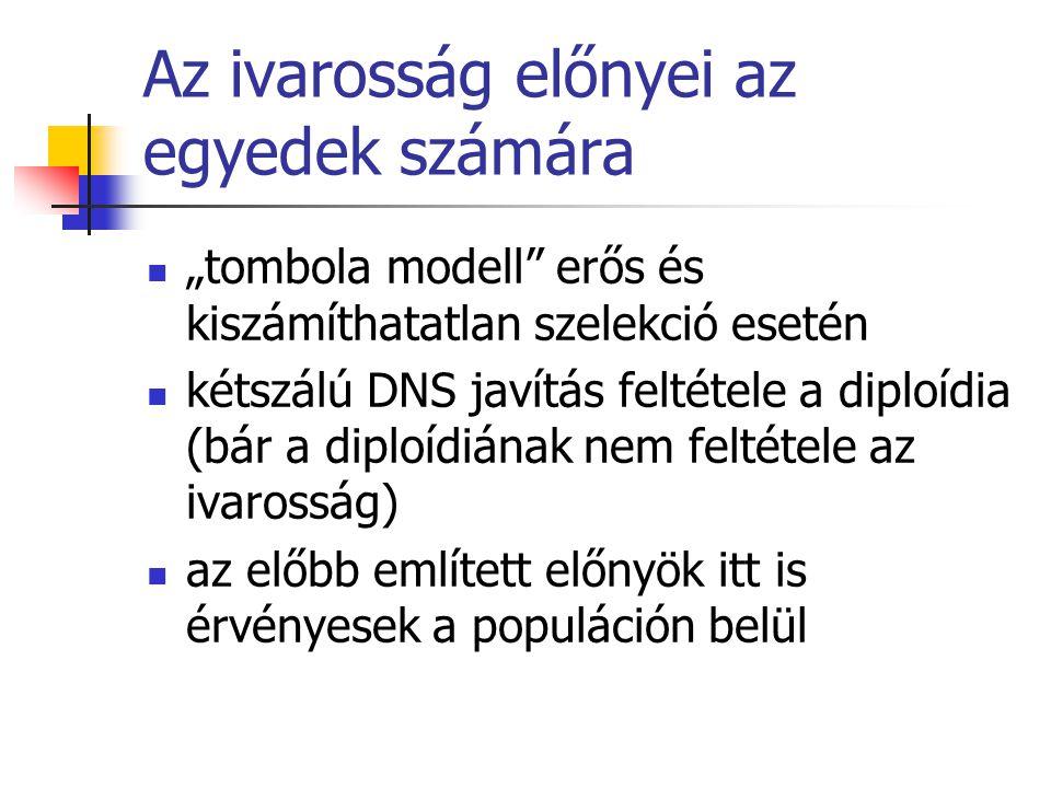 """Az ivarosság előnyei az egyedek számára """"tombola modell"""" erős és kiszámíthatatlan szelekció esetén kétszálú DNS javítás feltétele a diploídia (bár a d"""