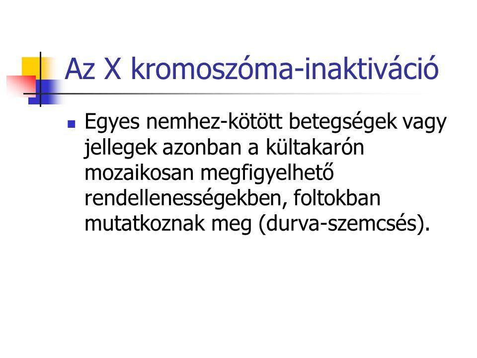 Az X kromoszóma-inaktiváció Egyes nemhez-kötött betegségek vagy jellegek azonban a kültakarón mozaikosan megfigyelhető rendellenességekben, foltokban