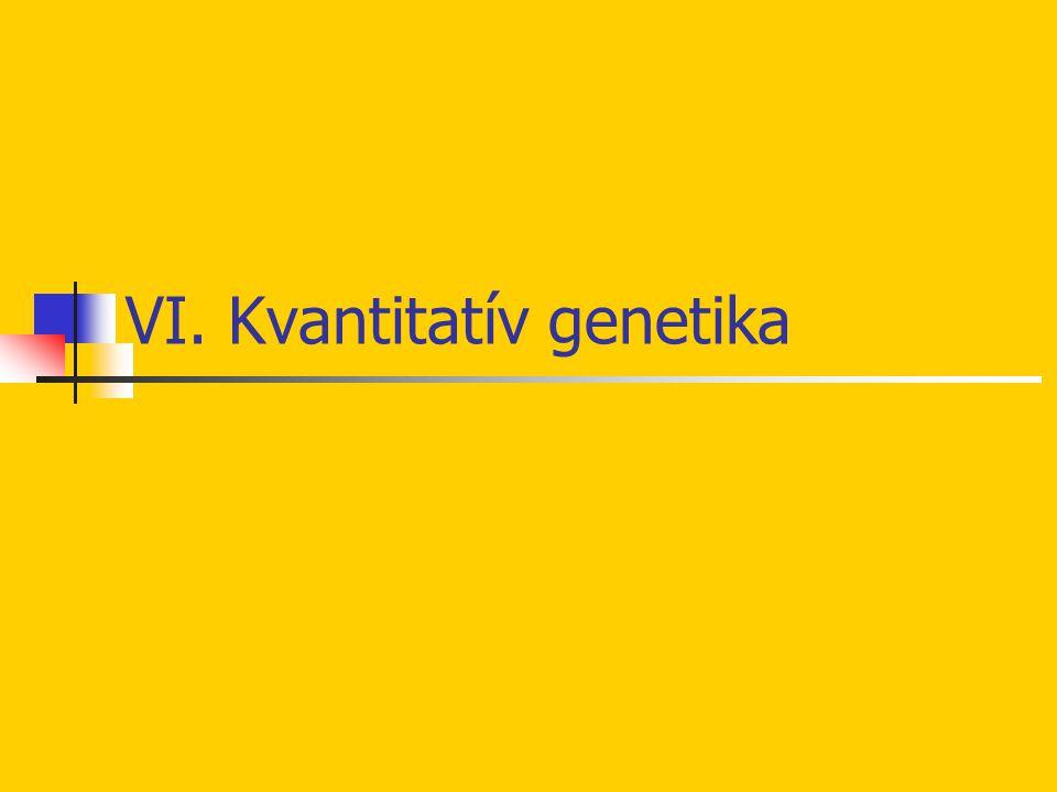 VI. Kvantitatív genetika