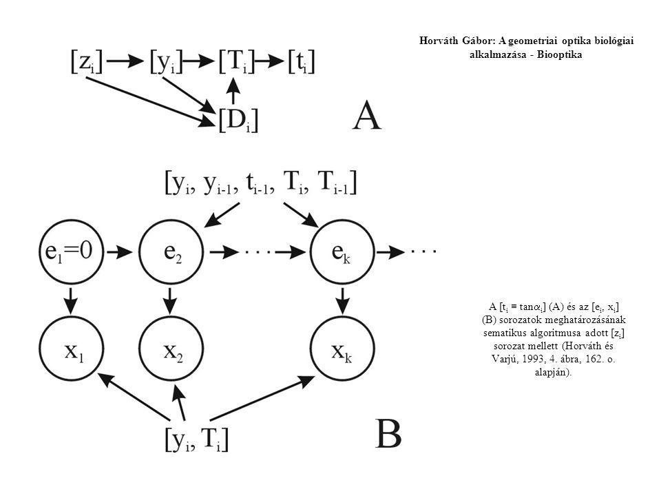 A [t i  tan  i ] (A) és az [e i, x i ] (B) sorozatok meghatározásának sematikus algoritmusa adott [z i ] sorozat mellett (Horváth és Varjú, 1993, 4.