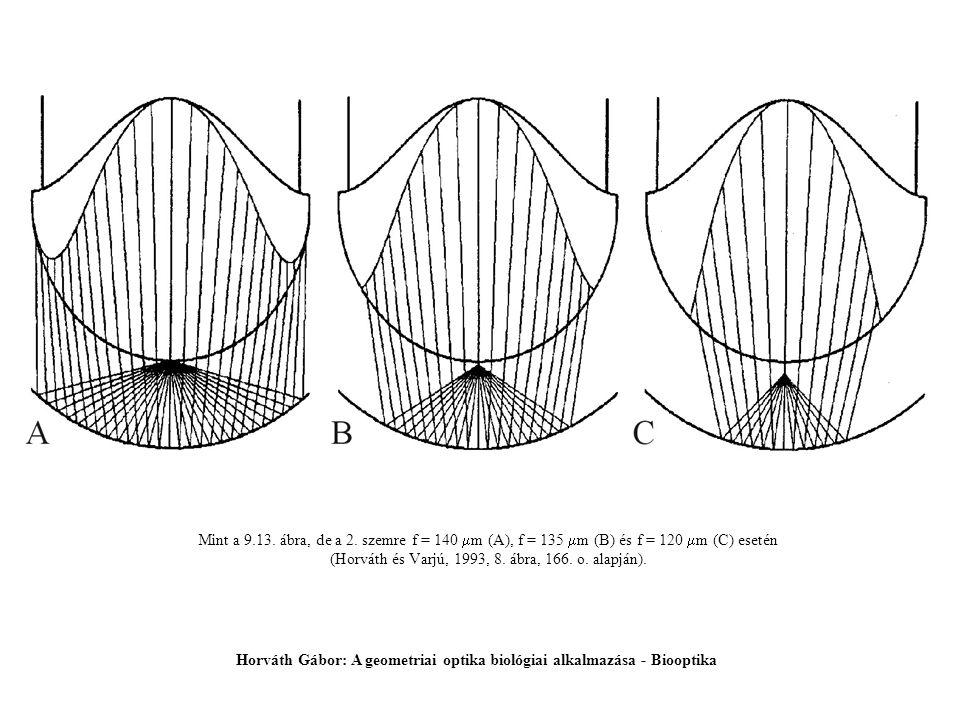 Mint a 9.13. ábra, de a 2. szemre f = 140  m (A), f = 135  m (B) és f = 120  m (C) esetén (Horváth és Varjú, 1993, 8. ábra, 166. o. alapján). Horvá