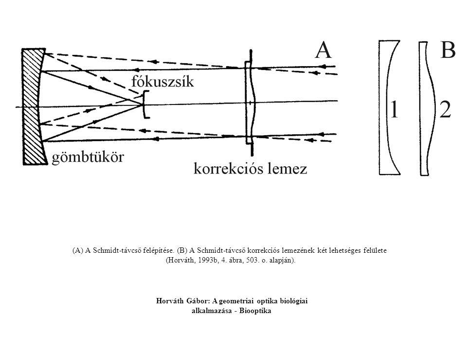 (A) A Schmidt-távcső felépítése. (B) A Schmidt-távcső korrekciós lemezének két lehetséges felülete (Horváth, 1993b, 4. ábra, 503. o. alapján). Horváth