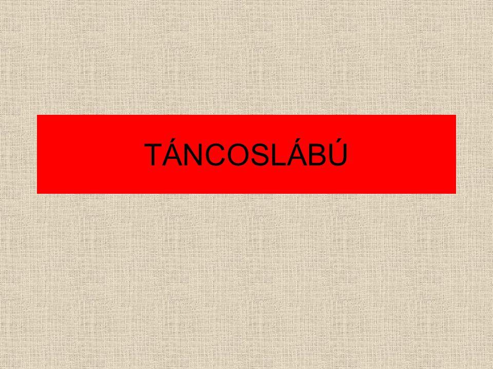TÁNCOSLÁBÚ