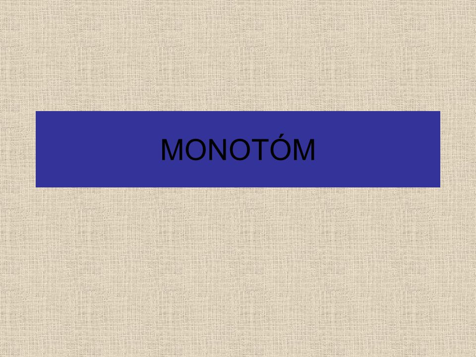 MONOTÓM