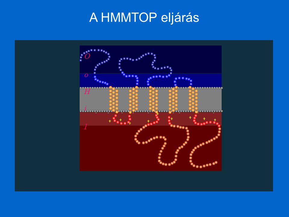 A HMMTOP eljárás H i I o O