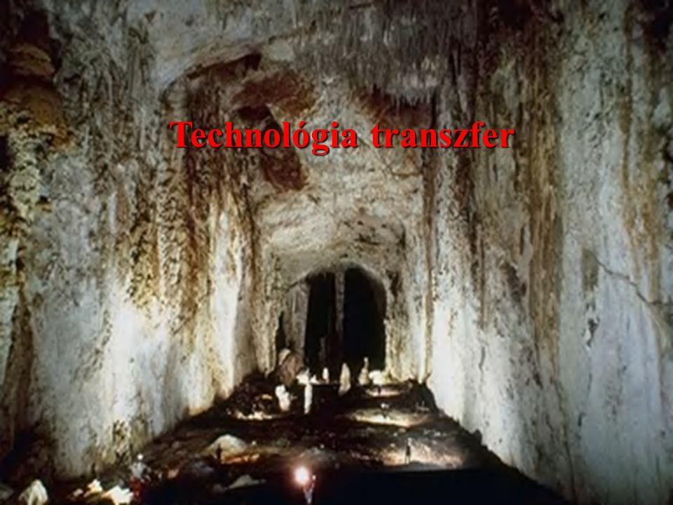 Technológia transzfer