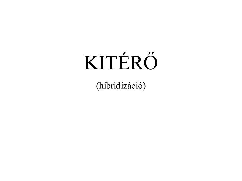KITÉRŐ (hibridizáció)