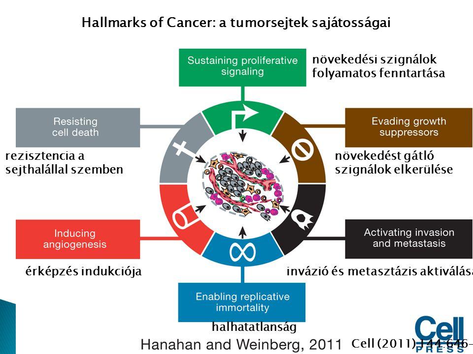 Hallmarks of Cancer: a tumorsejtek sajátosságai növekedési szignálok folyamatos fenntartása növekedést gátló szignálok elkerülése rezisztencia a sejth