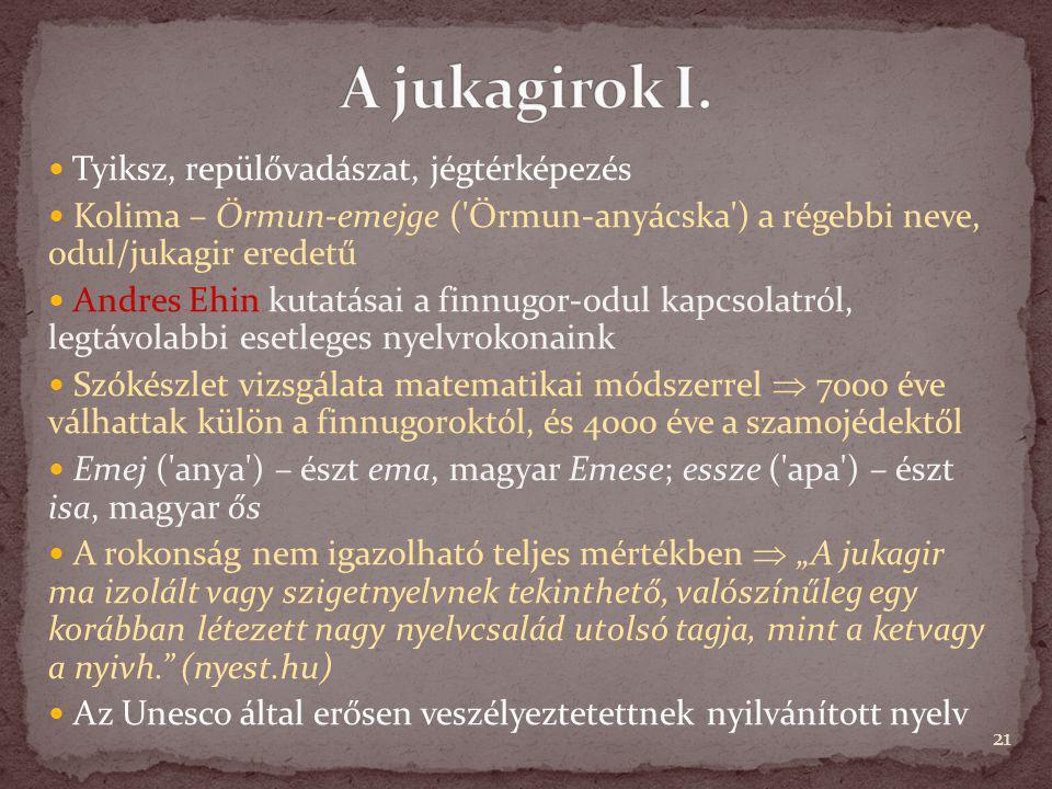 Tyiksz, repülővadászat, jégtérképezés Kolima – Örmun-emejge ('Örmun-anyácska') a régebbi neve, odul/jukagir eredetű Andres Ehin kutatásai a finnugor-o