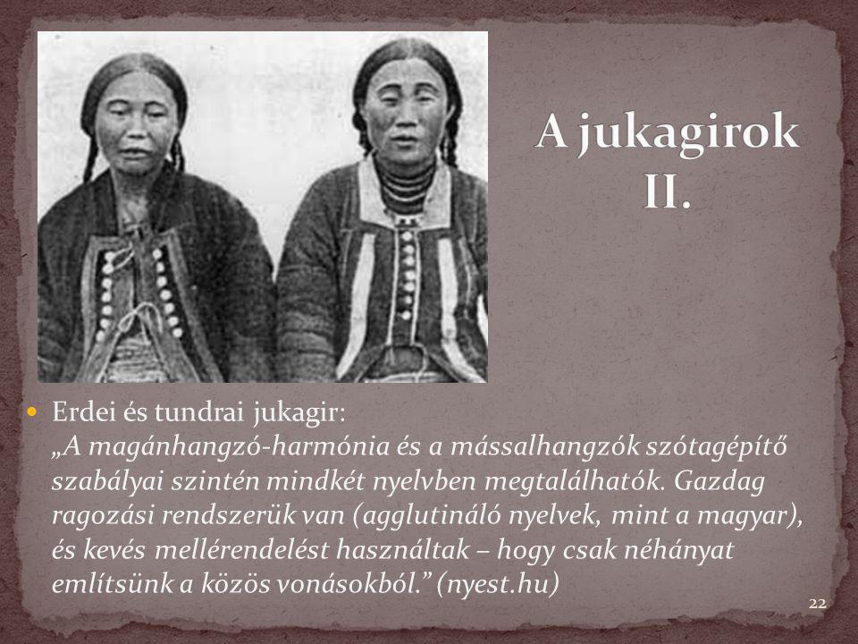 """22 Erdei és tundrai jukagir: """"A magánhangzó-harmónia és a mássalhangzók szótagépítő szabályai szintén mindkét nyelvben megtalálhatók. Gazdag ragozási"""