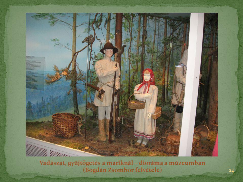 24 Vadászat, gyűjtögetés a mariknál  dioráma a múzeumban (Bogdán Zsombor felvétele)