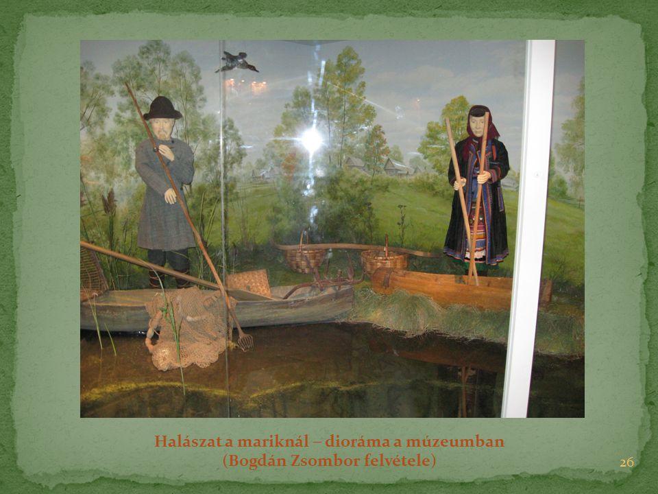 26 Halászat a mariknál  dioráma a múzeumban (Bogdán Zsombor felvétele)