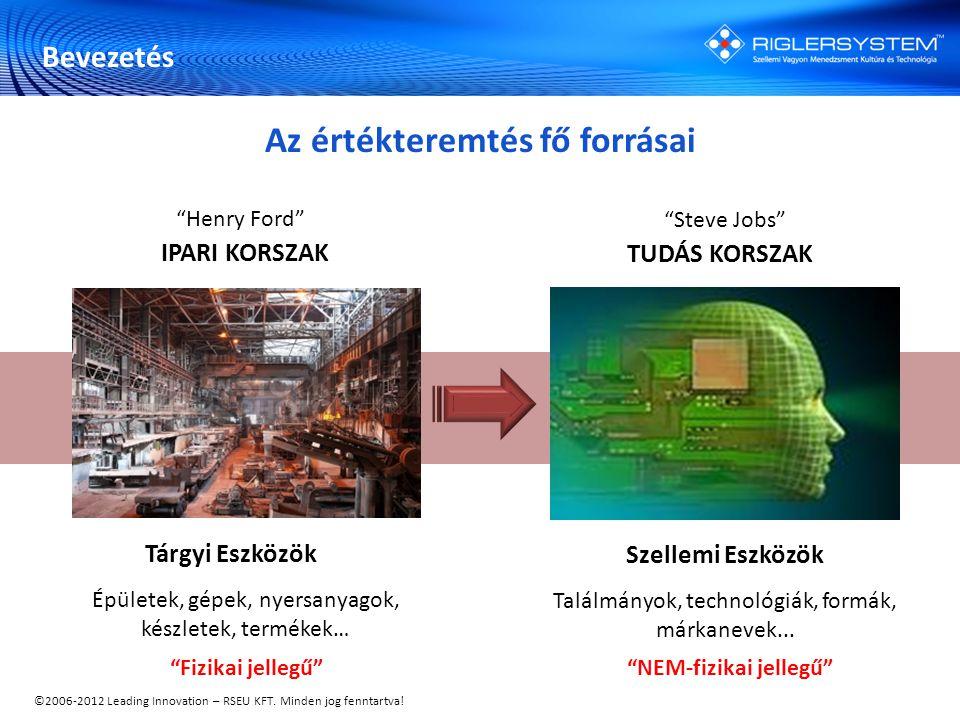 """©2006-2012 Leading Innovation – RSEU KFT. Minden jog fenntartva! Tárgyi Eszközök Épületek, gépek, nyersanyagok, készletek, termékek… """"Fizikai jellegű"""""""