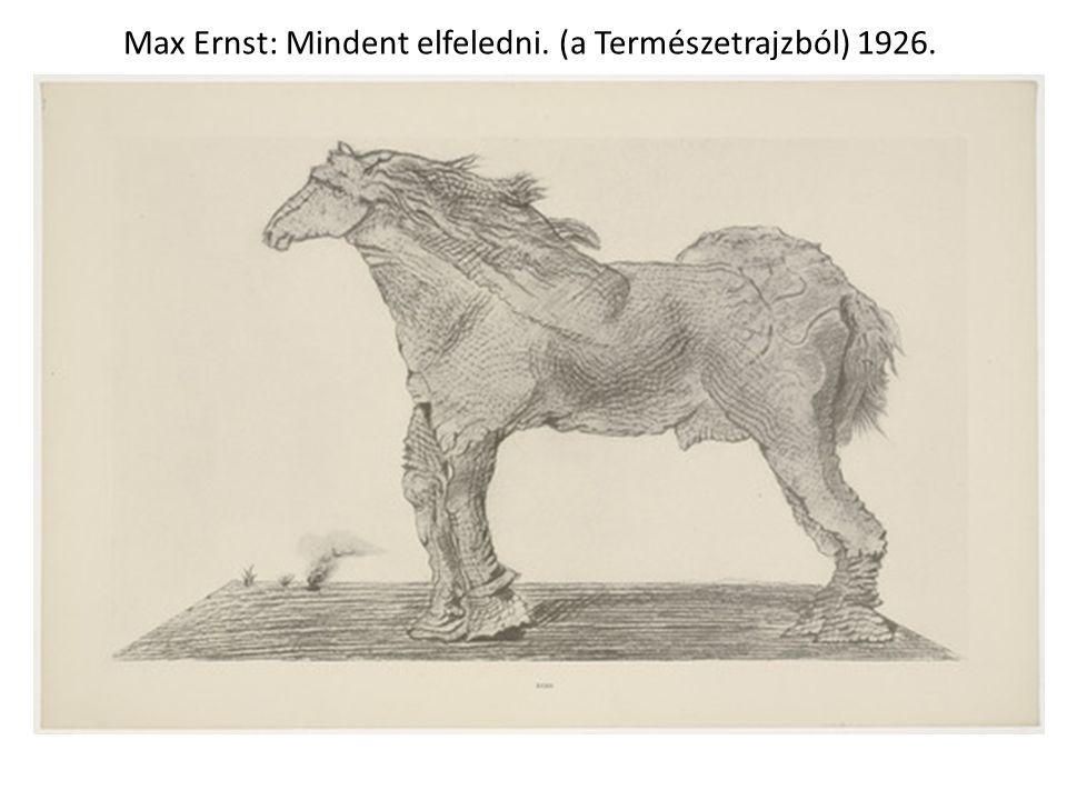 Max Ernst: Mindent elfeledni. (a Természetrajzból) 1926.