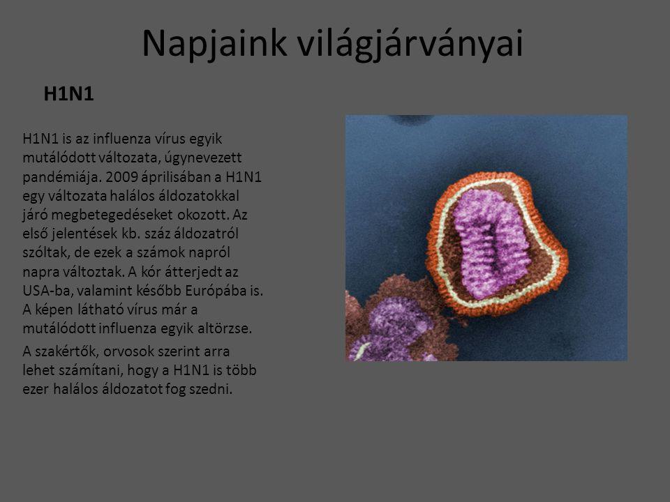 Napjaink világjárványai H1N1 H1N1 is az influenza vírus egyik mutálódott változata, úgynevezett pandémiája. 2009 áprilisában a H1N1 egy változata halá