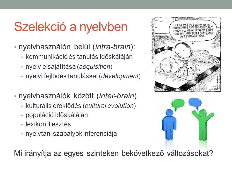 Szelekció a nyelvben nyelvhasználón belül (intra-brain): kommunikáció és tanulás időskáláján nyelv elsajátítása (acquisition) nyelvi fejlődés tanulással (development) nyelvhasználók között (inter-brain) kulturális öröklődés (cultural evolution) populáció időskáláján lexikon illesztés nyelvtani szabályok inferenciája Mi irányítja az egyes szinteken bekövetkező változásokat