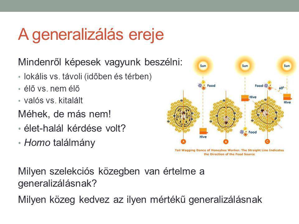 A generalizálás ereje Mindenről képesek vagyunk beszélni: lokális vs.