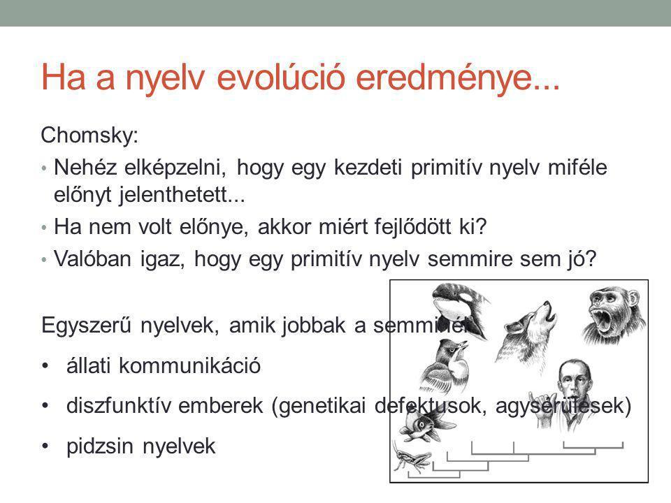 Ha a nyelv evolúció eredménye...