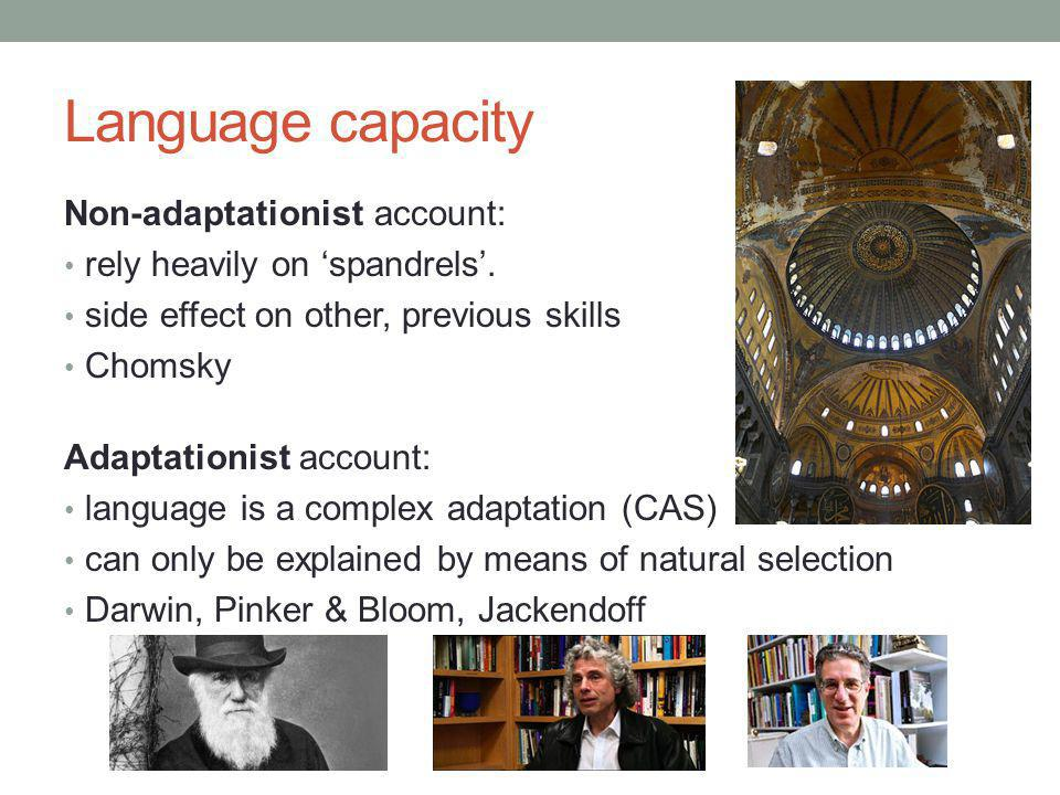 Language capacity Non-adaptationist account: rely heavily on 'spandrels'. side effect on other, previous skills Chomsky Adaptationist account: languag