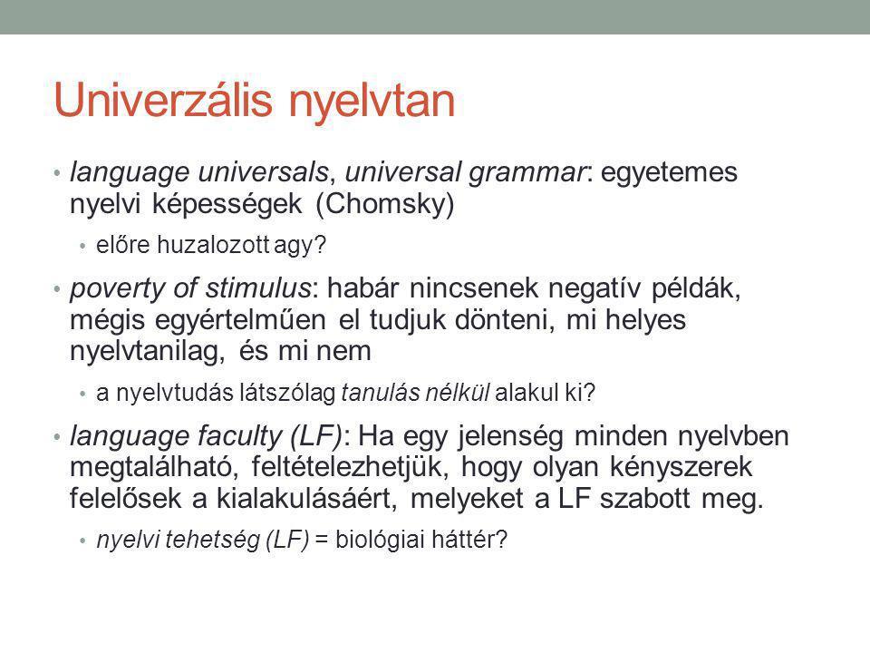 Univerzális nyelvtan language universals, universal grammar: egyetemes nyelvi képességek (Chomsky) előre huzalozott agy.