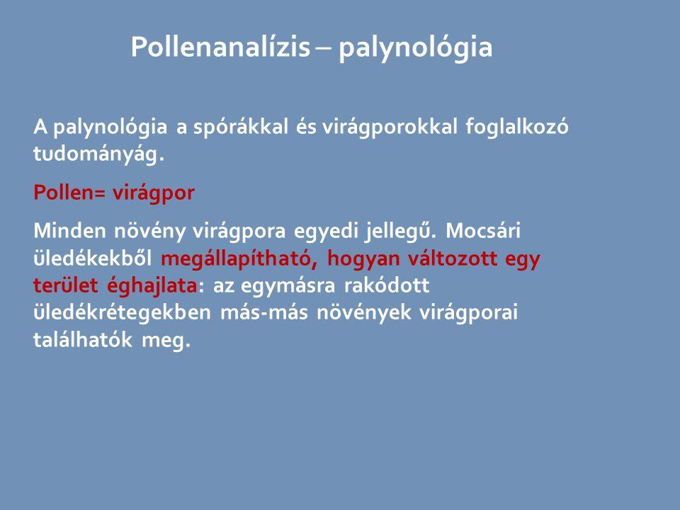 A palynológia a spórákkal és virágporokkal foglalkozó tudományág. Pollen= virágpor Minden növény virágpora egyedi jellegű. Mocsári üledékekből megálla