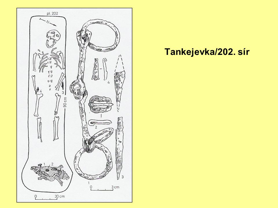 Tankejevka/202. sír