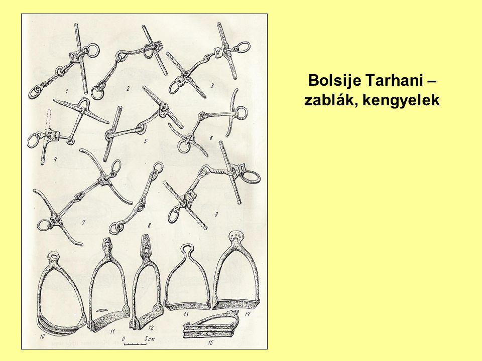 Türk Attila 2010: 286. kép)