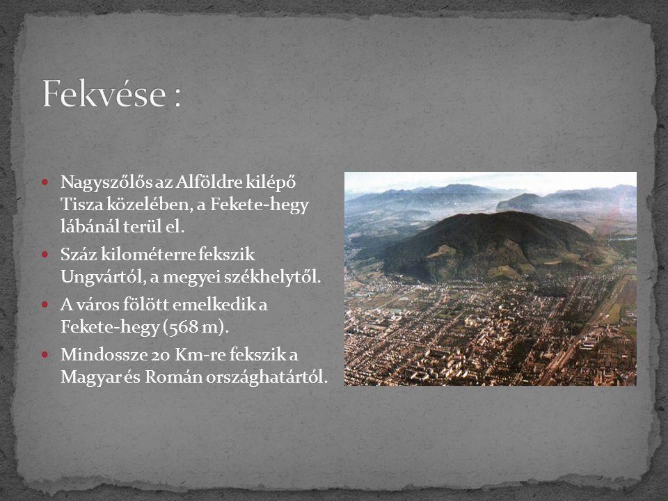 Nagyszőlős az Alföldre kilépő Tisza közelében, a Fekete-hegy lábánál terül el. Száz kilométerre fekszik Ungvártól, a megyei székhelytől. A város fölöt