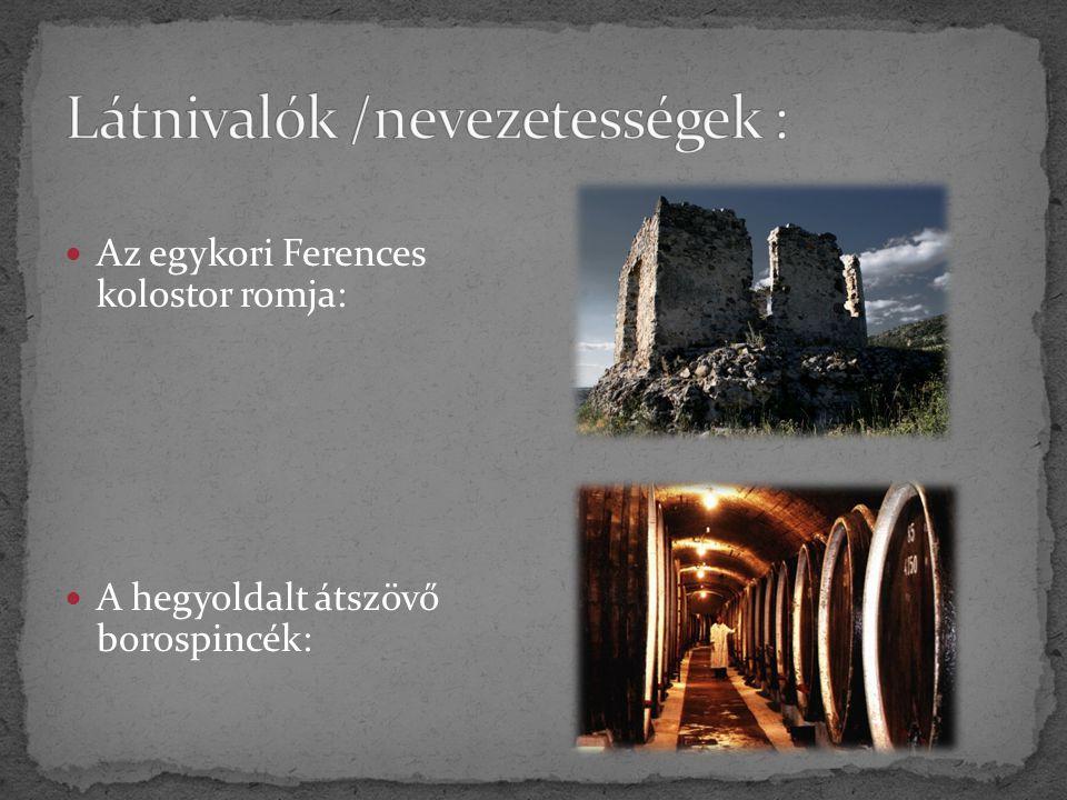 Az egykori Ferences kolostor romja: A hegyoldalt átszövő borospincék: