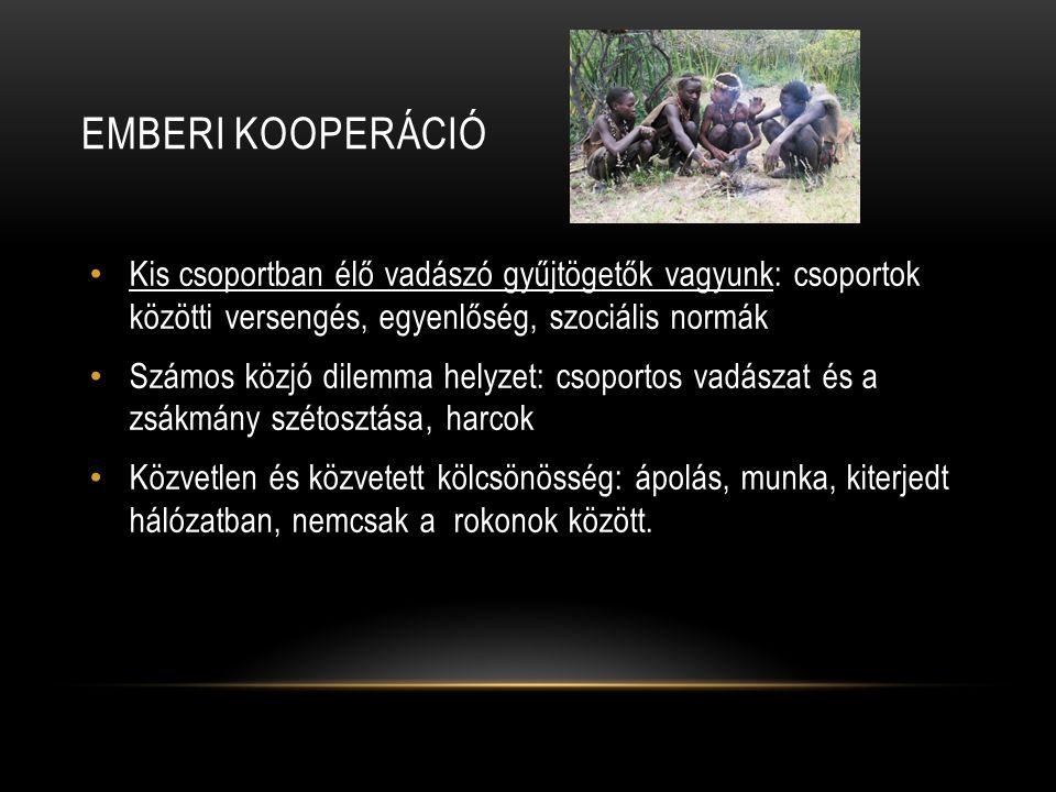 EMBERI KOOPERÁCIÓ Kis csoportban élő vadászó gyűjtögetők vagyunk: csoportok közötti versengés, egyenlőség, szociális normák Számos közjó dilemma helyz