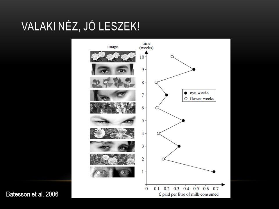 VALAKI NÉZ, JÓ LESZEK! Batesson et al. 2006