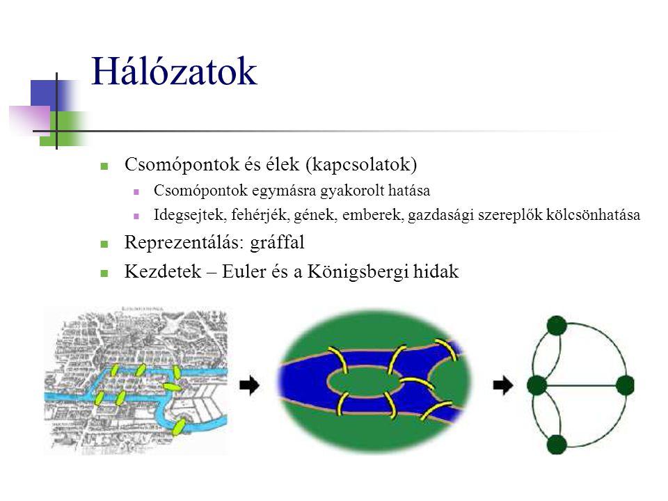 Hálózatok Csomópontok és élek (kapcsolatok) Csomópontok egymásra gyakorolt hatása Idegsejtek, fehérjék, gének, emberek, gazdasági szereplők kölcsönhatása Reprezentálás: gráffal Kezdetek – Euler és a Königsbergi hidak