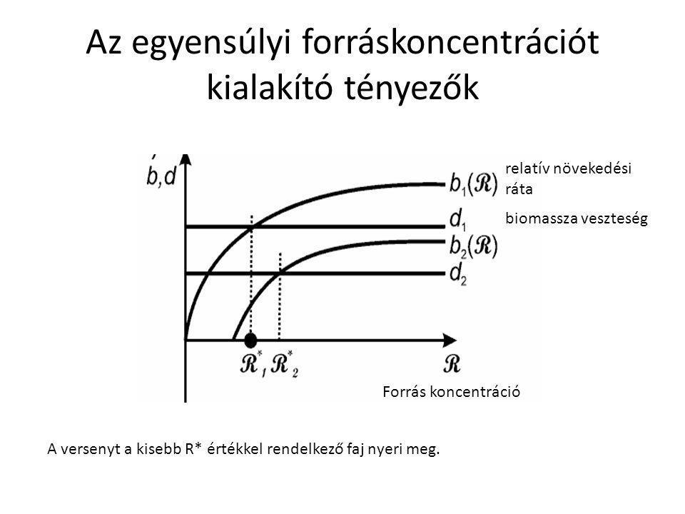 Az egyensúlyi forráskoncentrációt kialakító tényezők Forrás koncentráció relatív növekedési ráta biomassza veszteség A versenyt a kisebb R* értékkel r